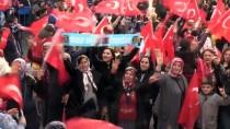 AK Parti'nin İskenderun Mitingi