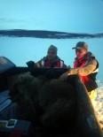 Buz Tutan Gölete Düşen Yavru Ayıyı Jandarma Kurtardı