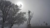 Doğu Anadolu'da Soğuk Hava Açıklaması Ağrı Eksi 12