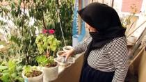 107 Yaşındaki Hamide Nineye Sürpriz Doğum Günü