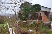 Ordu'da Ocak Ayındaki Fırtınanın Zararları Karşılandı