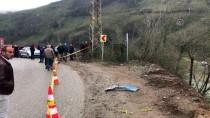 Ordu'da Otomobil Irmağa Yuvarlandı Açıklaması 1 Ölü