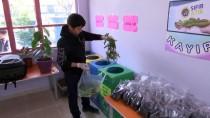 EMINE ERDOĞAN - Evlerden Atık Toplayıp Okulda Solucan Gübresi Üretiyorlar