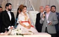 Aşiret Düğününde Geline Kilolarca Altın Takıldı