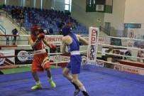 Türkiye Boks Şampiyonası Final Maçlarıyla Sona Erdi