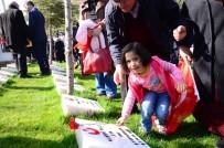 Aksaray'da Şehitler Mezarı Başında Anıldı