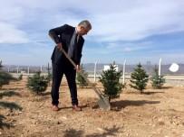 Kırşehir'de Şehitler Haftası'nda Hatıra Ormanı Oluşturuldu