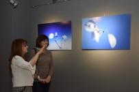 AKAUM Ve EFSAD'tan 'Sade' Fotoğraf Sergisi
