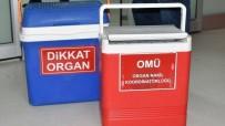 İntihar Etti Organları 4 Hastaya Umut Oldu