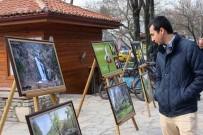 FOTOĞRAF SERGİSİ - Menteşe'de 5 Bin Fidan Dağıtıldı