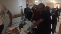 ŞAHIT - Abi Kardeş Kavgasında Kan Aktı