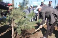 Bingöl'de Adalet Ormanı Oluşturuldu