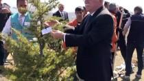 Bolu'da 'Adalet Ormanı' Oluşturuldu