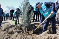 Elazığ'da Adalet Ormanı Oluşturuldu