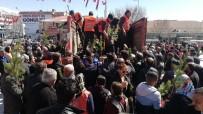 Erzincan'da Fidan İzdihamı
