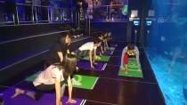 İstanbul Akvaryum'da Yoga Etkinliği Düzenlendi