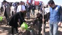 Karaman'da Adalet Ormanı Oluşturuluyor