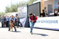 SOĞUK HAVA DEPOSU - Kocamaz, Kaşlı Geçici Hayvan Bakımevi'nin Açılışını Yaptı