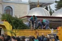 Korkuteli'nde Vatandaşlara Ücretsiz 10 Bin Adet  Fidan Dağıtıldı