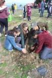 ERHAN GÜNAY - Öğrenciler, Dünya Ormancılık Günü'nde Fidanları Toprakla Buluşturdu