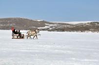 ÇıLDıR GÖLÜ - Kars'ta 40 Santim Buz Tutan Göl Üzerinde Atlı Kızak Keyfi