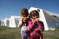 Deprem Bölgesinde Çadırda Çocuk Olmak