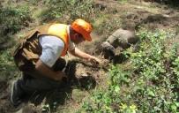 Kahramanmaraş'ta Kralların Yiyeceği 'Trüf Mantarı' Üretimi Başlıyor