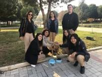 HAYVAN SEVGİSİ - Harçlıklarından Arttırdıkları Paralarla Sokak Hayvanlarına Mama Aldılar
