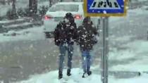 Ahlat'ta Kar Etkili Oldu