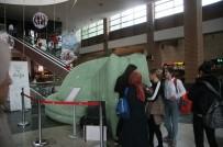 Minikler Gök Cisimlerini Forum Magnesia'da Keşfetti