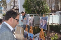 HELİKOPTER KAZASI - Muhsin Yazıcıoğlu Anısına Resim Sergisi Açıldı