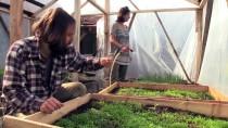 Permakültür Çiftliği İçin Karavanla 8 Ülkeyi Aştılar
