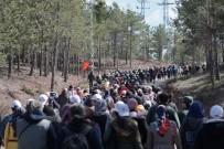 Yüzlerce Kişi Ormanlar İçin Toplandı