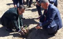Alaşehir'de Orman Haftası Kutlandı