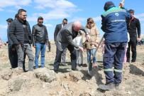 Odunpazarı Belediyesi Ahbap Derneği İle 2  Bin 500 Fidan Dikti