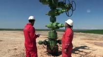 Güneydoğu'da Petrol Sevinci
