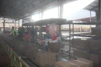ŞENOL TURAN - Oltu'da Tuğla Fabrikası Açıldı
