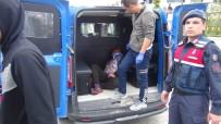 SERVİS ŞOFÖRÜ - Otobüs Şoförüyle Tartışan İranlı Turistler Ortalığı Birbirine Kattı