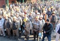 TÜRKİYE TAŞKÖMÜRÜ KURUMU - Yeşil; 'Kararları Madenciyle Birlikte Alacağız'