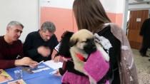 KÖPEK YAVRUSU - Oyunu Yavru Köpeği 'Bücür' İle Kullandı