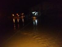 CEYLANPINAR - Ceylanpınar'da Yağışlarda 20 Hayvan Telef Oldu