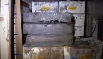 KOKAIN - İstanbul'da Muz Yüklü Konteynerden 185 Kilo Kokain Çıktı