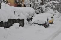 Tek Katlı Evler Karda Kayboldu