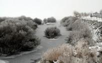 Doğu Anadolu Buz Kesti Açıklaması Ardahan Eksi 20