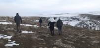 Kars'ta Yaban Hayvanlara Yem Bırakılıyor