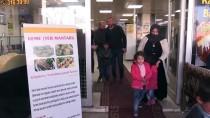 GIDA MÜHENDİSLİĞİ - Şanlıurfa'nın Mart Ve Nisan Aylarına Özel Kebabı 'Keme'