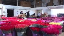 SEVGILILER GÜNÜ - Türkiye'den Gönderilen Çiçekler 20 Ülkenin Kadınlarını Sevindirecek