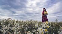 GIZEMLI - Kuş Cennetinde Saklı Nergis Adasını Keşfettiler