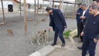 Nasıranlı, Hayvan Bakım Evi Ve Rehabilitasyon Merkezini Gezdi