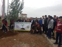 Bismil'de Okullar Yeşilleniyor